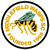 Middlefield Wasps SC